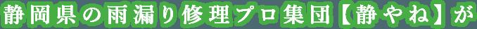 地元静岡市の雨漏り修理プロ集団【セイショウ】が